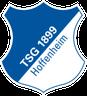 Escudo de Hoffenheim