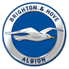 Escudo de Brighton and Hove