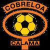 Escudo de Cobreloa
