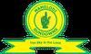 Escudo de Mamelodi Sundowns