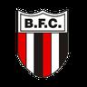 Escudo de Botafogo-SP